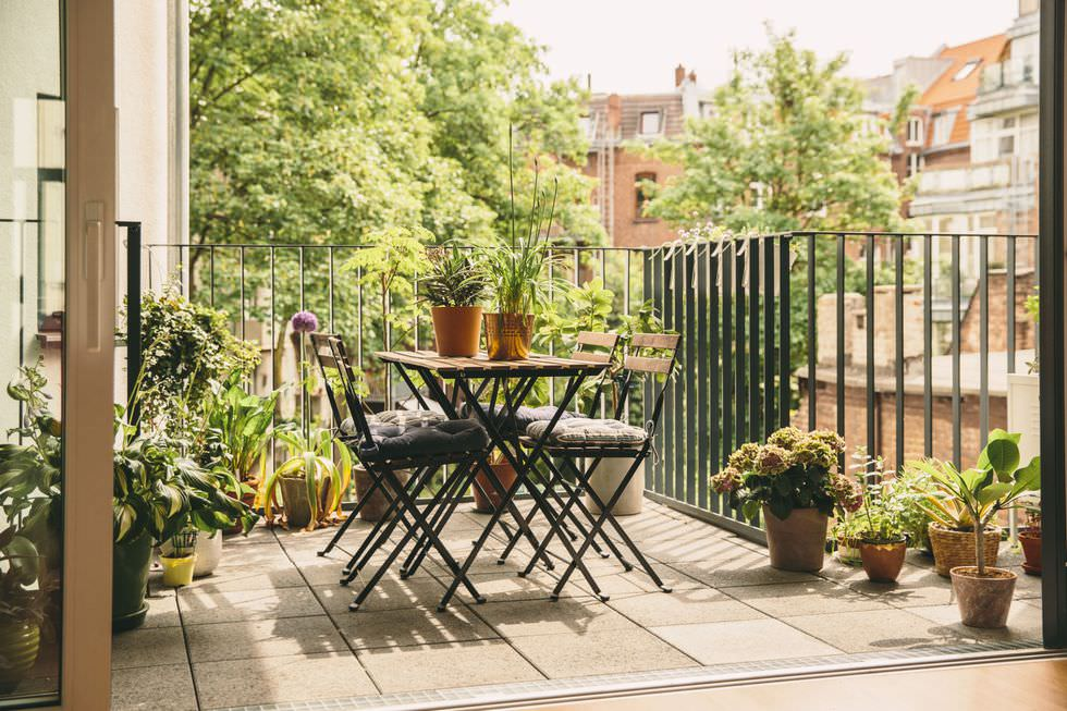 Sunny Balcony Garden - Plants and Furniture